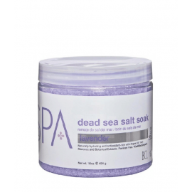 Dead Sea Salt Soak Lavender